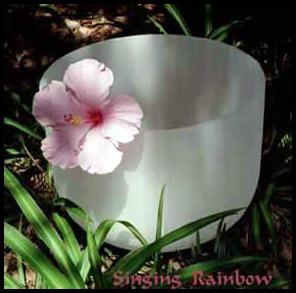 Singing Rainbow