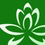 Open Lotus Studio - Austin, TX