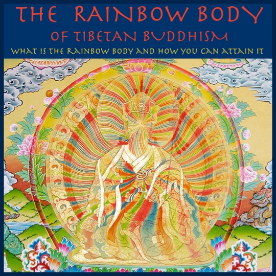 Steven Ross - Austin Rainbow Body