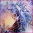 Stacie Codino - Spirit Awakenings Angelic Shamanism™ Healing & Teaching Circle