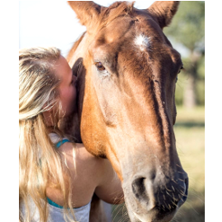 Equine Energy Workshop - Stacie Codino - Marble Falls Texas