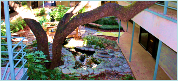 Garden Office Space For Lease - Austin Texas - Heather Rider pond fountain