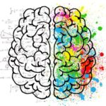 brain-left-right-logical-creative