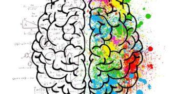 brain-left-right-logical-creative